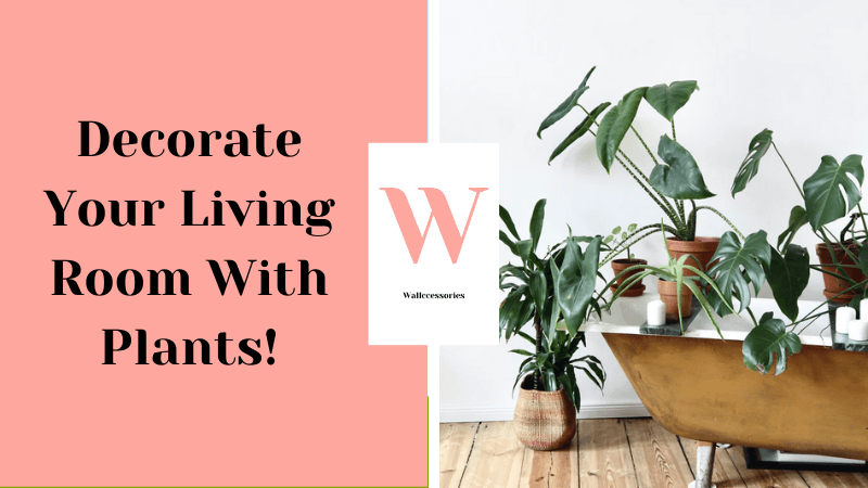 how to decorate your living room with plants featured image